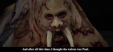 Walrus Wallace